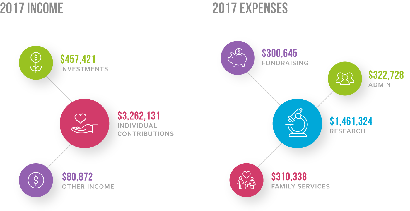 Income and Expenses - 2017