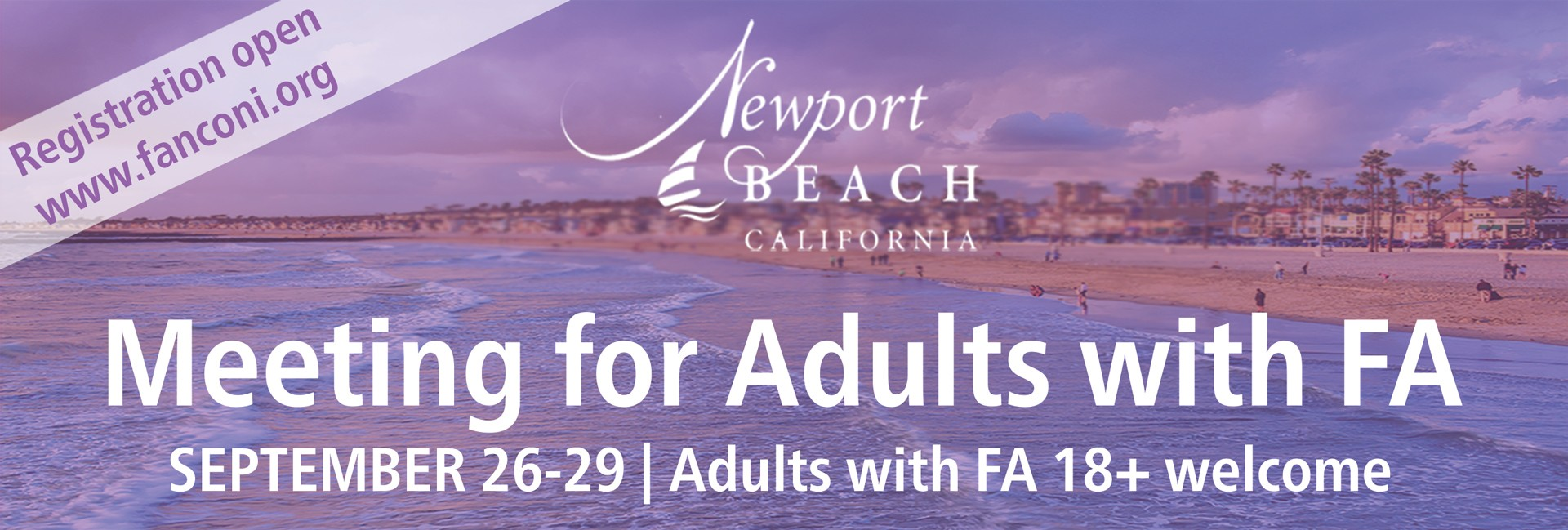 Meeting for Adults with FA